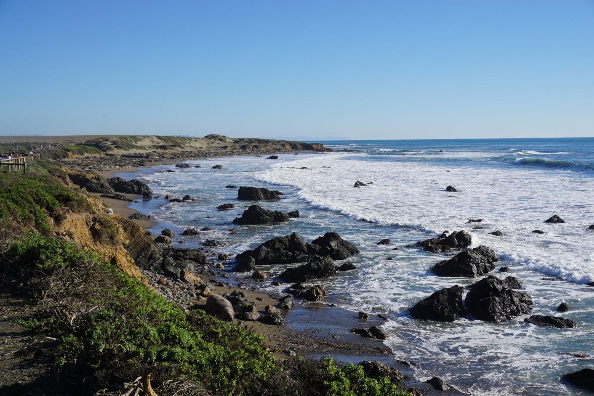 California Highway 1 Stories: Hearst Castle and Elephant Seals