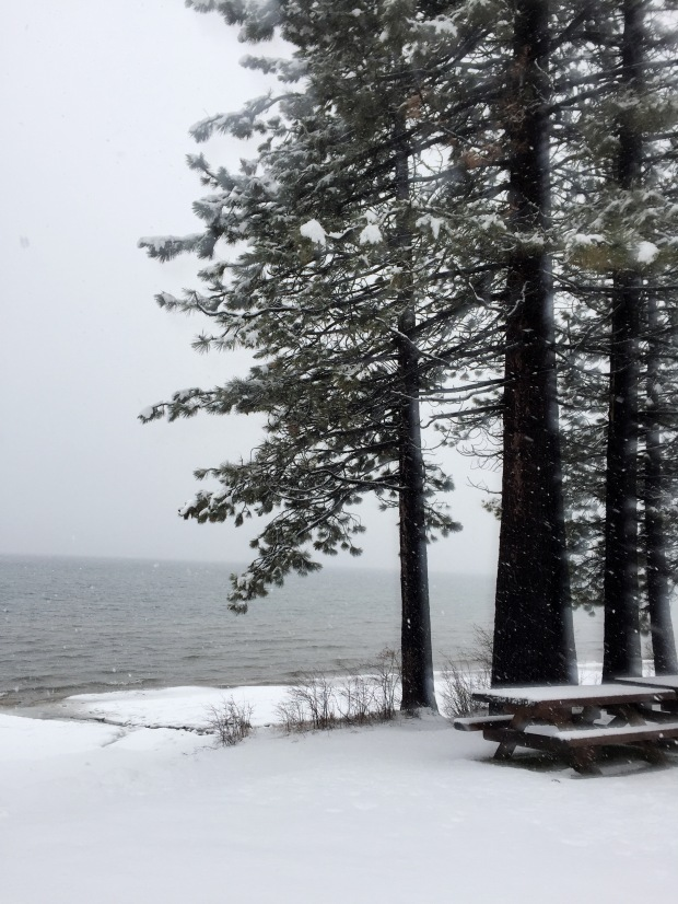 LakeTahoe_winterPicnic