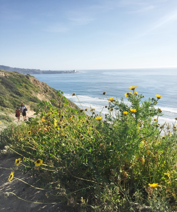 TorreyPines_hike_to_Blacks_Beach