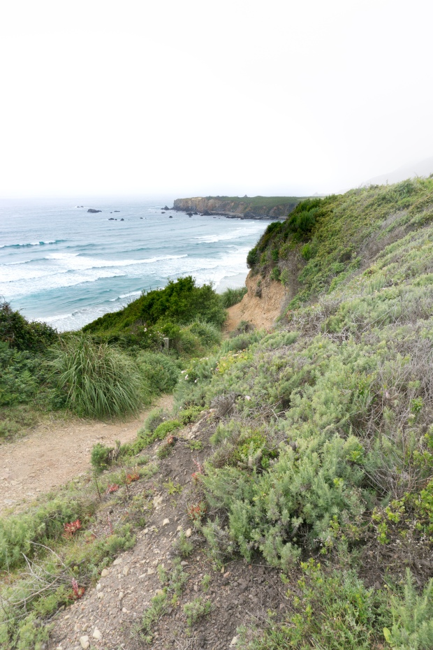 Big_Sur_Coastline_Views
